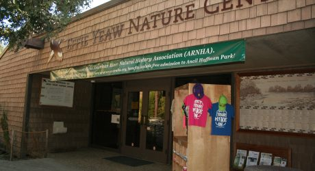 David Catlin Consulting LLC completed an interpretive plan and building analysis for the Effie Yeaw Nature Center, which is run by the American River Natural History Association.